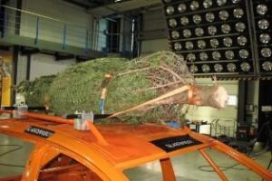 Auch 2010 gibt der ADAC (Bild) Tipps zur richtigen Ladungssicherung beim Christbaumtransport