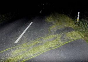 Verlorenes Maishäcksel war vor genau einem Jahr die Ursache für einen schweren Unfall gewesen (Foto: Archiv Polizei Rotenburg)