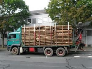 Dieser Holz-Lkw war um rund 30 Prozent überladen (Foto: Polizeipräsidium Mittelhessen)