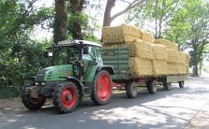 Immer wieder zur Ernetzeit: Mangelnde Ladungssicherung Landwirtschaft (Foto: Polizeiinspektion Diepholz)