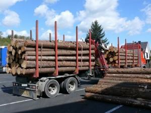 Von der Polizei verwogener Holztransport mit erheblicher Überladung; Foto: Polizei Hersfeld